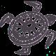 turtle_rechts